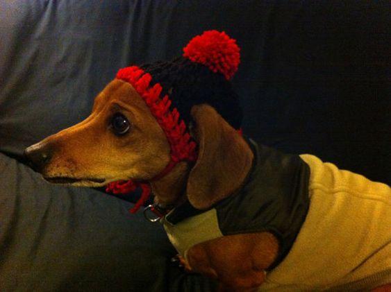 Gorrita tejida a Crochet para Dachshund con la franja y el  Pom Pom rojo