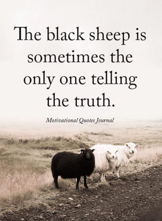 The Black Sheep Is Sometimes The Only One Telling The Truth Motivational Memes Funny Motivational Memes Words Quotes