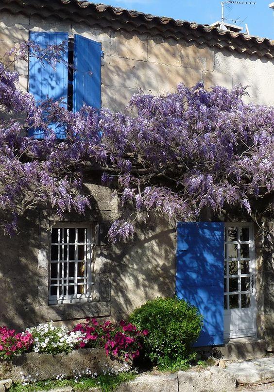 """Résultat de recherche d'images pour """"fleurs de provence pinterest"""""""
