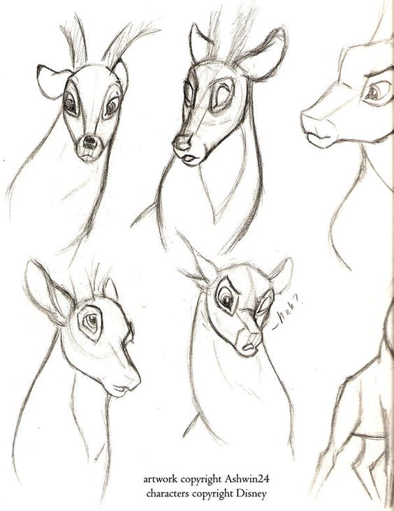 Another part of a sketchbook page featuring disney deer. artwork by myself, characters copyright disney