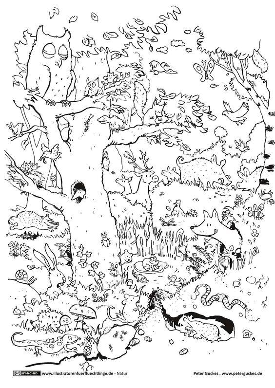 Natur - Wald Tiere - Guckes | basteln | Pinterest | Malvorlagen und Wald