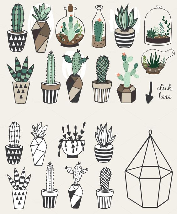 Hand drawn Succulents in Terrarium by lokko studio on Creative Market