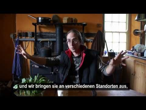 Ben Gable on hybrid-seed / Ben Gable über Hybrid-Saatgut - YouTube
