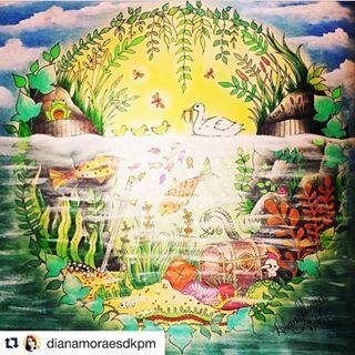 Selva Mágica Oficial @selvamagicaoficial Instagram profile - Pikore