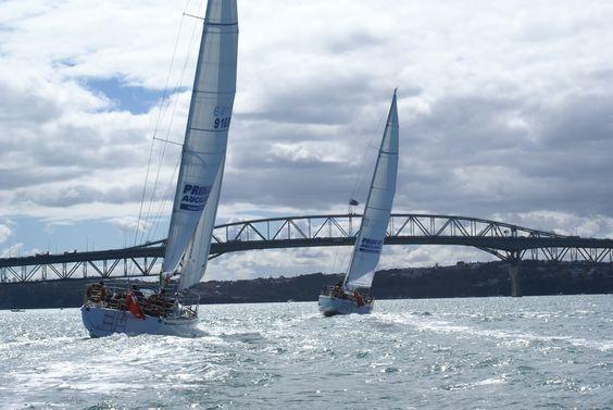 The Auckland Harbour Bridge & Pride of NZ yachts