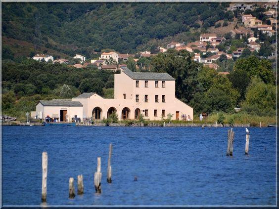 Corsica - Etangs de Corse -  L'étang de Biguglia (ou de Chiurlino, en corse stagnu di Chjurlinu) est une lagune corse située au sud de Bastia, sur le fleuve Bevinco.Furiani l'écomusée de l'étang de Biguglia