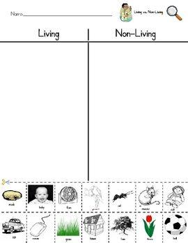 living vs nonliving sort worksheet science ideas pinterest cut and paste assessment and. Black Bedroom Furniture Sets. Home Design Ideas