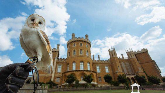 Belvoir Castle Images from Elysian Estates