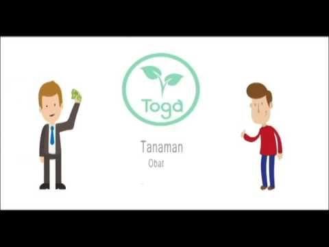 Fantastis 30 Gambar Kartun Tanaman Toga Toga Sehat Dengan Tanaman Herbal Youtube Download Download Tanaman Kotak Teks Sprin Kartun Gambar Kartun Gambar