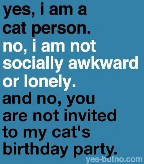 Cat birthday, Cats and Cat birthday parties on Pinterest
