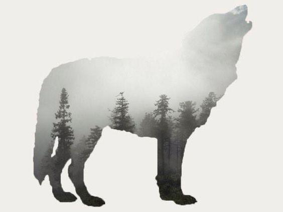 森を描いたおしゃれでかっこいい犬の壁紙