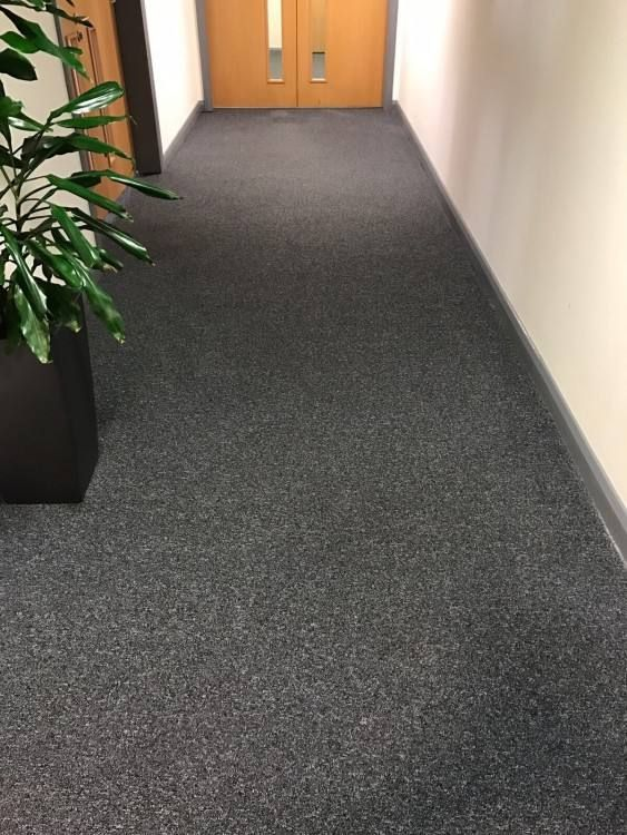 Different Types Of Commercial Carpet Cleaning How To Clean Carpet Commercial Carpet Cleaning Diy Carpet