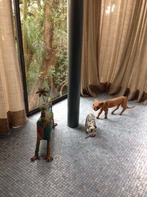 pequena amostra da coleção de bichos brasileiros esculpidos em madeira por artesãos dialogam diretamente com a modernidade da casa