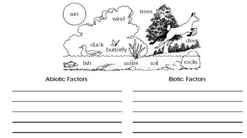 Biotic And Abiotic Factors Worksheets Abiotic Biotic
