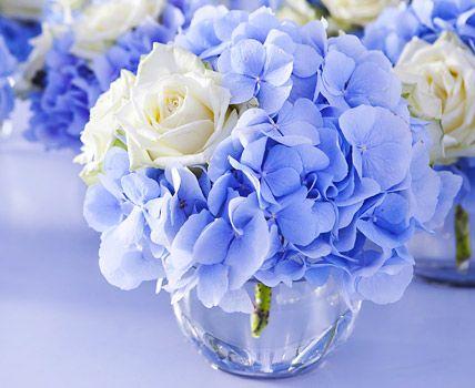 mit hortensien dekorieren ideen f r bl hende arrangements blaue hortensien hortensien blau. Black Bedroom Furniture Sets. Home Design Ideas