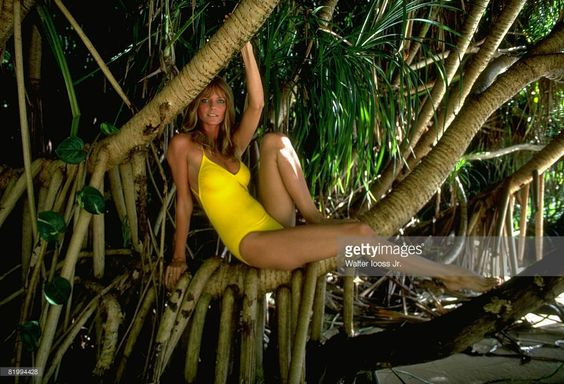 News Photo : Model Cheryl Tiegs poses for the 1983 Sports...: