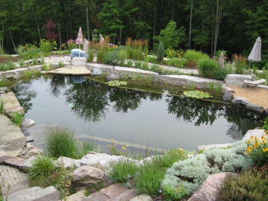 67 Cool Backyard Pond Design Ideas Ponds Backyard Swimming Pond Pond Landscaping