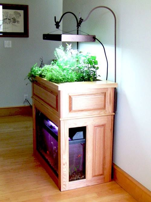 Gardens herbs garden and conversation pieces on pinterest for Fish tank herb garden