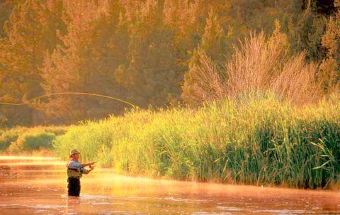 Fly fishing is a big past time here, especially on the Weber river
