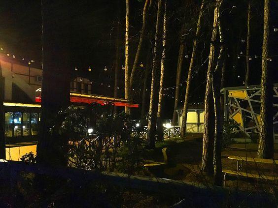 Ночные виды города Светлогорск 31 декабря 2018 г. Фото: Evgenia Shveda