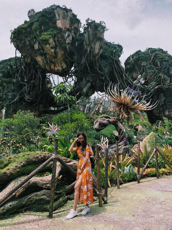 Pandora the World of Avatar in Disney Animal Kingdom