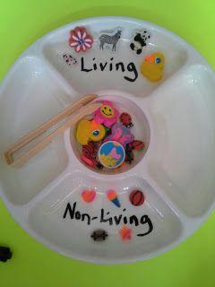 CUTE sorting game! love it! #science #kindergarten