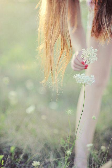 .: Queen Anne S, Wild Flower, Beautiful Images, Wildflower, Inner Peace, Anne S Lace, Queen Annes Lace