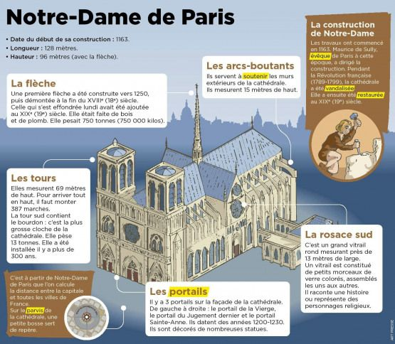 France Frases En France Educational Infographic French Activities French Lessons