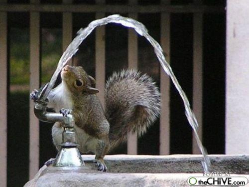 thirsty: