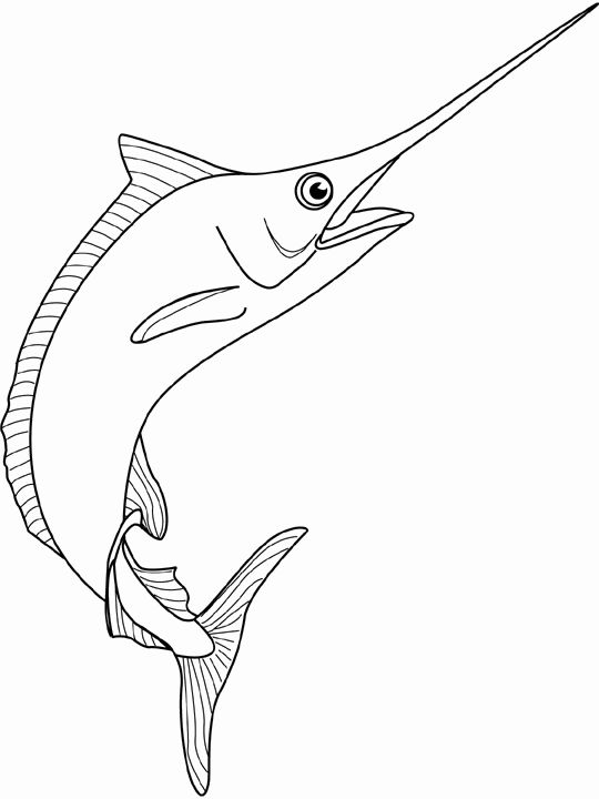 Line drawing swordfish coloring picture of spearfish - Dessin espadon ...