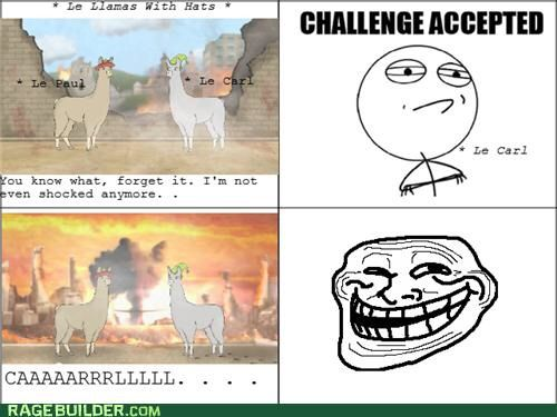 I Feel Like Ive Just Been Issued A Challenge Please Dont Carl - Llamas with hats cruise ship