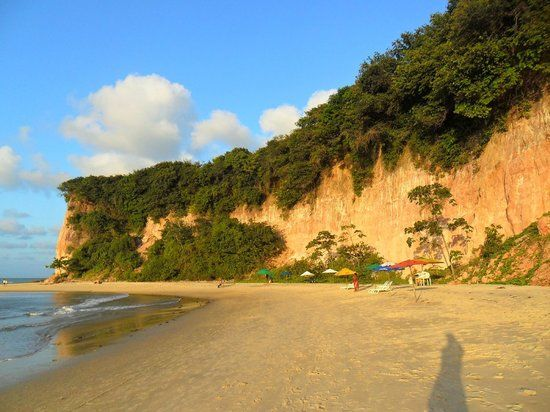 Baía dos Golfinhos Praia da Pipa, Brasil