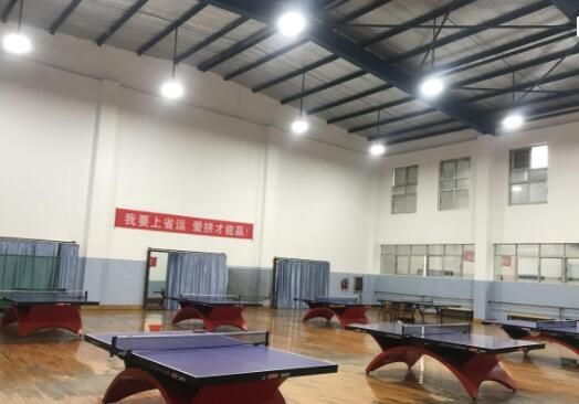 Ping Pong Table Lighting Light Table Ping Pong Table Table Tennis Room