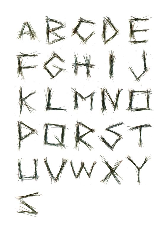 pine-alphabet-maryjohoffman