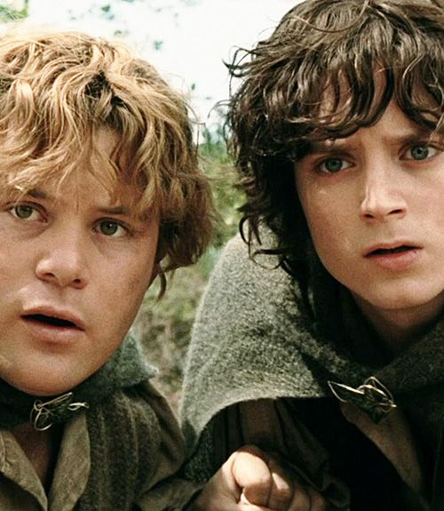 lord of the rings frodo and sam relationship