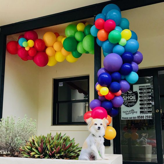Organic Balloons featuring cute dog