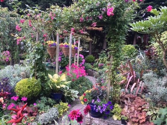 This HGTV fan has been very busy this summer!: Purple, Pink, Flowers Garden, Floral, Hgtv Fan