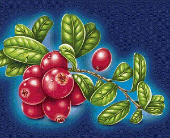 ягоды, предпросмотр