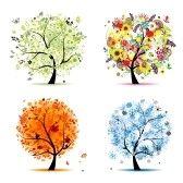 Quatre saisons - printemps, été, automne, hiver. Art arbre magnifique pour votre conception  stock photography