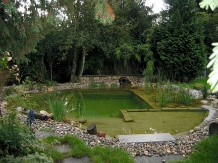 Natural swimming pool neat stuff pinterest cleaning for Natural pond maintenance