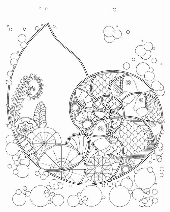 32 Spiral Adult Coloring Book Designs Coloring Books