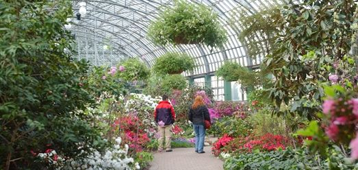 Along with the Horticulture Hall, THE SHOW HOUSE is the site of spectacular flower shows each year: the Spring, Summer, and Holiday Shows. All of the plant material displayed in the shows is grown at the Conservatory. This room was damaged in the June 30, 2011 hailstorm and will not display flower shows until repairs are completed.