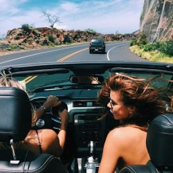 top down || wind blowing || driving wherever