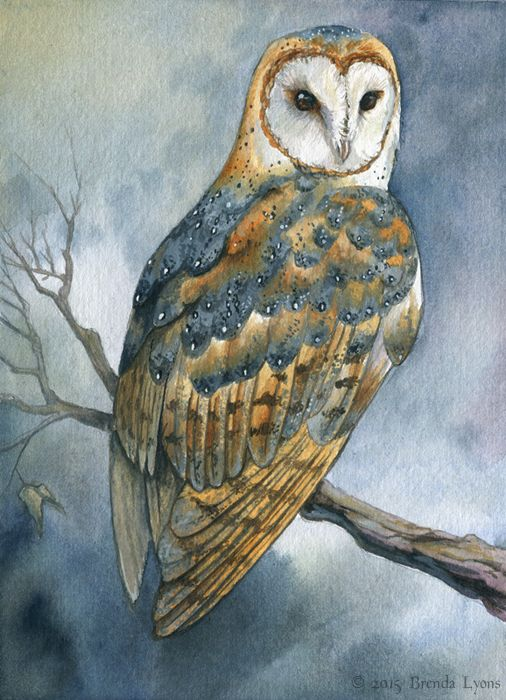 The second of three barn owl commissions for Emberguard, the first being a Melanistic Barn Owl from several years ago. This one is sitting amidst a stormy sky. Watercolor on soft-press Fabria...