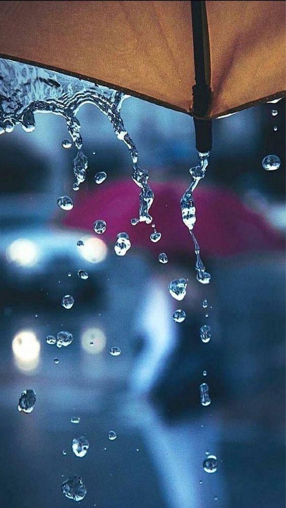 Rain Season Wallpapers Wallpaper Backgrounds Wallpaper Images Hd Android Wallpaper Rain wallpaper hd download mobile