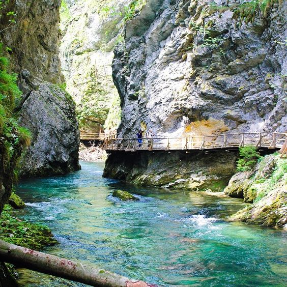A Gorge Walk in Bled, Slovenia taken by one of the @capptura team #picoftheday #pictureoftheday #earthporn #summer #snapshot #capture #instadaily #photo #photography #photooftheday #capptura