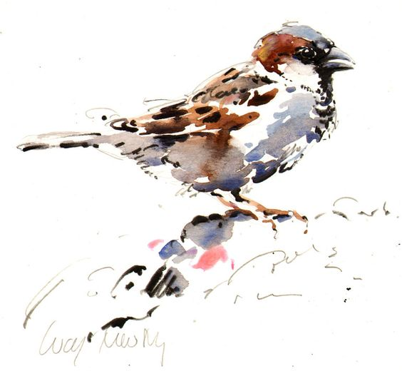 "Saatchi Online Artist: Lucy Newton; Paper, Mixed Media ""House Sparrow"""