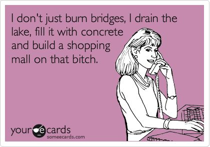 I don't just burn bridges, I drain the lake, fill it with concrete and build a shopping mall on that bitch.
