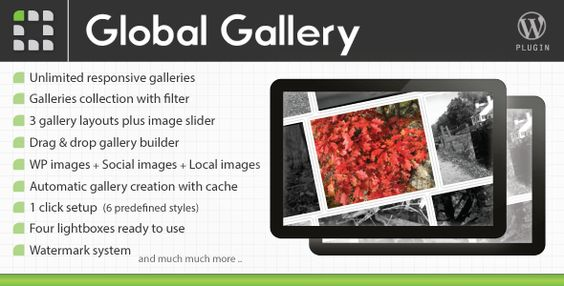 ** Global Gallery | LCweb Projects ($20 responsive Gallery / Lightbox)