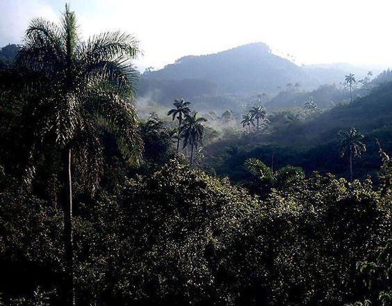 Paisaje de montaña cubana. Escambray